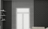 Fashion Window Blinds Double Roller Blinds